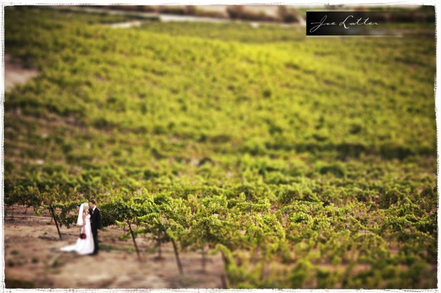 090829 0001 Falkner Winery