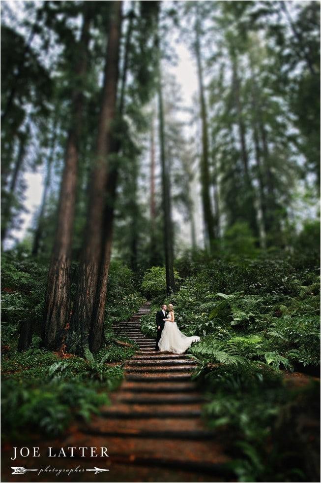 0001 Best Nestldown Wedding Photographer